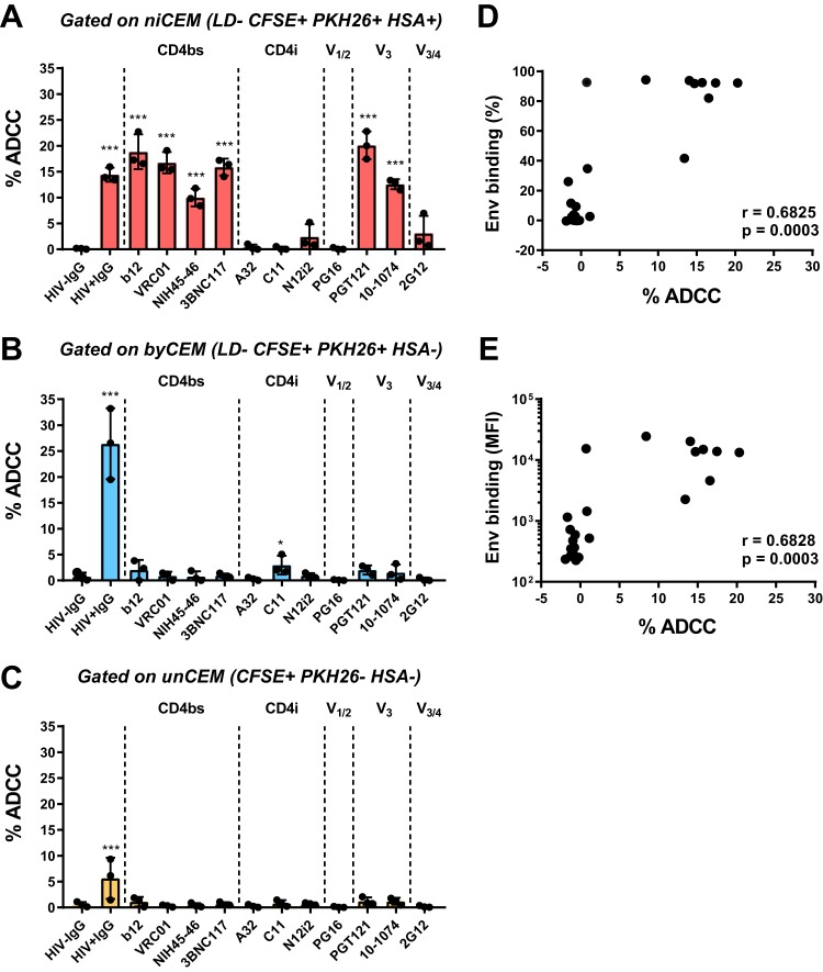 ADCC activity mediated by anti-Env monoclonal and polyclonal Abs to niCEM cells, byCEM cells, and unCEM cells (A to C) Four days p.i., infected CEM cells were labeled with CFSE, LD, and PKH26 and combined with uninfected CEM (unCEM) cells labeled with CFSE only as described for Fig. 3 . The combined CEM cells were opsonized with 15 μg/ml of each anti-Env Abs used as described for Fig. 3 and incubated with effector NK cells for 1 h followed by staining with anti-HSA and AnV. ADCC activity (% ADCC) was measured as the frequency of AnV + cells among niCEM (LD − CFSE + PKH26 + HSA + , red bars; A), byCEM (LD − CFSE + PKH26 + HSA − , blue bars; B) and unCEM (CFSE + PKH26 − , orange bars; C) cells. Data represent averages ± SD of results from three independent experiments. Each dot represents a single NK cell donor. Significance was determined by comparing the percentages of ADCC between each anti-Env Ab used and HIV − IgG (*, P