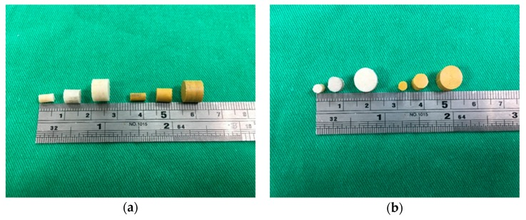 Photographs of the fabricated drug-loaded beads. The white cylindrical beads are fluconazole-impregnated Poly( d , l -lactide- co -glycolide) (PLGA) beads. The yellow cylindrical beads are amphotericin B-impregnated PLGA beads.
