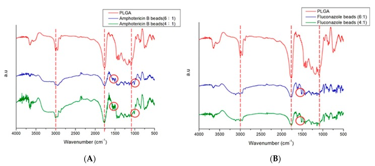 Fourier-transform infrared spectra of ( A ) pure Poly( d , l -lactide- co -glycolide) (PLGA) and amphotericin B/PLGA beads ( B ) pure Poly( d , l -lactide- co -glycolide) (PLGA) and fluconazole/PLGA beads.