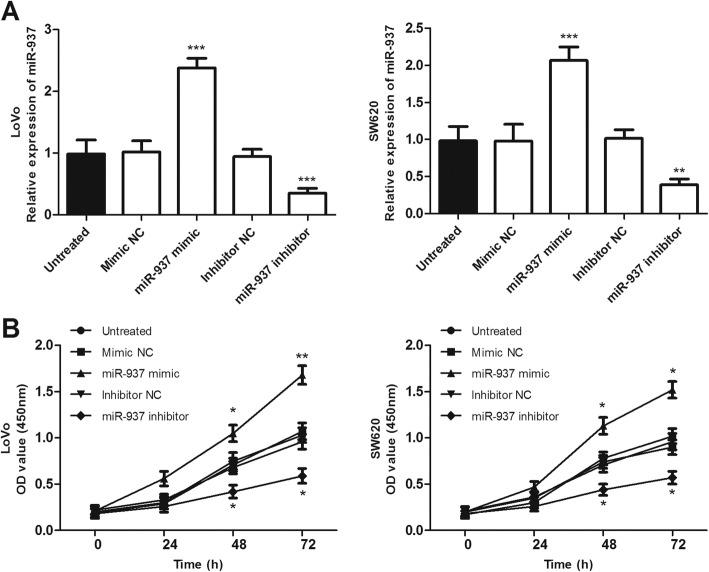 Overexpression and downregulation of miR-937 promotes and inhibits the proliferation of colon cancer cells (LoVo and SW620), respectively, compared with untreated cells. a . The relative expression level of miR-937 was significantly increased by miR-937 mimic, while decreased by miR-937 inhibitor in LoVo and SW620 cells, compared with that in the untreated cell. b . Cell proliferation was detected by CCK-8 assay. * P