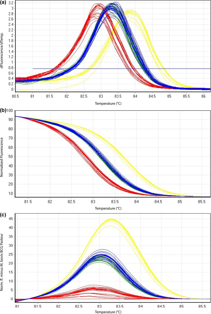 Representative high‐resolution melting graphs corresponding to one high‐resolution melting analysis of a subset of cultured samples ( n = 22) of HRM assay 2. Curves of tested samples previously identified as M. tuberculosis are shown in yellow, M. microti in blue, M. bovis / M. bovis BCG in red, and M. caprae in green. (a) Melting curves; (b) normalized plot; and (c) difference plot in relation to M. bovis BCG Pasteur ATCC 35734