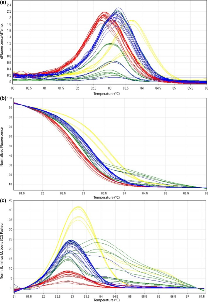Representative high‐resolution melting graphs corresponding to one high‐resolution melting analysis of a subset of clinical specimens ( n = 18) for HRM assay 2. Curves of tested samples previously identified as M. tuberculosis are shown in yellow, M. microti in blue, M. bovis / M. bovis BCG in red, and M. caprae in green. (a) Melting curves; (b) normalized plot; and (c) difference plot in relation to M. bovis BCG Pasteur ATCC 35734