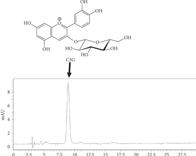 Chromatogram of LCEE. LCEE (5 μ g) was injected onto HPLC with the following conditions: system, Shimadzu LC–10A VP (Kyoto, Japan); column, TSK-GEL ODS-80 TS (4.6 × 250 mm, Tosoh, Tokyo); mobile phase, 0.5% AcOH/0.5% AcOH in CH 3 OH 85 : 15; flow rate, 1.0 mL/min; column temperature, 40°C; and detection, 520 nm. Peak at 9.0 min was identified as cyanidin 3-O-glucoside (C3G). LCEE: Lonicera caerulea var. emphyllocalyx extract; HPLC: high-performance liquid chromatography.