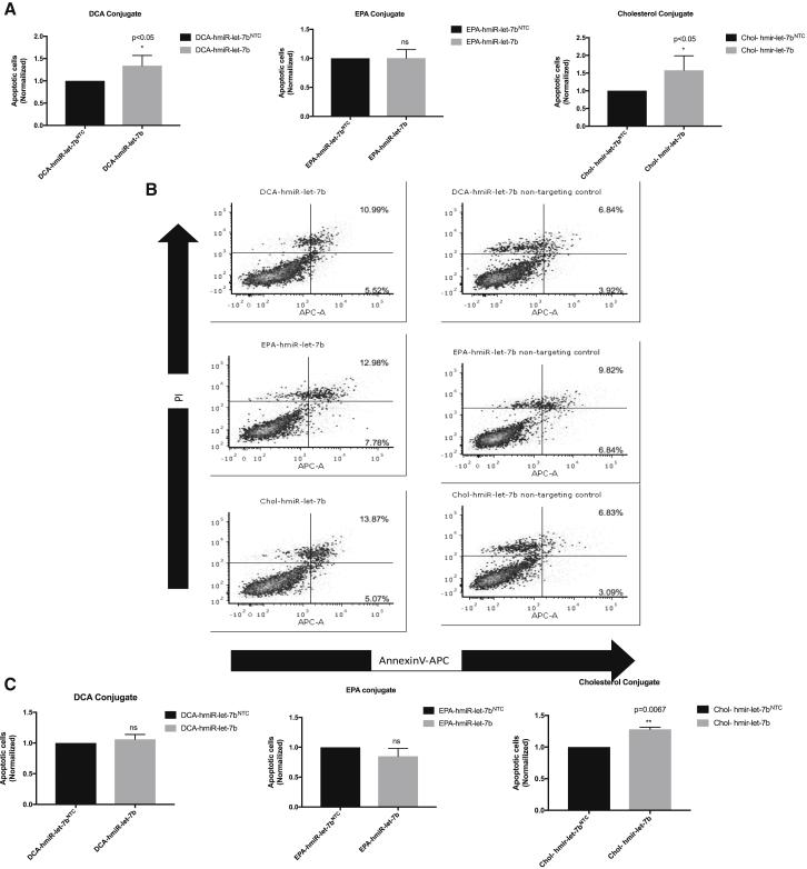 hmiR- let-7b Conjugates Increase Apoptosis In Vitro (A) Mean of annexin V + PI + from at least three independent experiments at 72 h post-treatment with hmiR let-7b conjugate (DCA, EPA, and Chol) in the HCC827 cell line. *p
