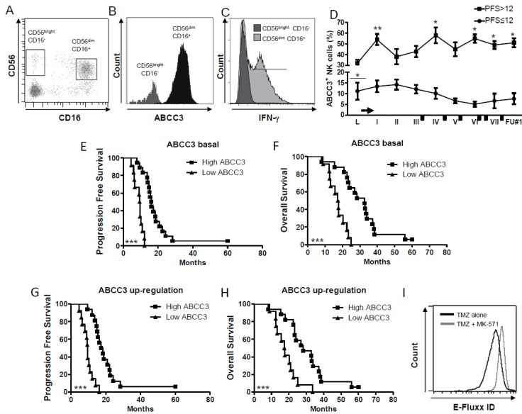ABCC3 expressed by CD56 dim CD16 + NK cells is an indicator of better patient prognosis. ( A – C ). ( A ) Representative dot plots showing that CD56 dim CD16 + NK cells express ( B ) high levels of ABCC3, ( C ) and CD56 dim CD16 + ABCC3 + NK cells express <t>IFN-γ.</t> ( D ) Time course of frequency of NK cells expressing ABCC3 measured by flow cytometry (* p