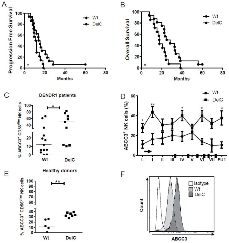DelC genetic variant is related to a better response to chemoimmunotherapy. ( A , B ) Kaplan–Meier survival curves showing the correlation between DelC SNP and a good outcome, expressed as ( A ) PFS and ( B ) OS (DelC patients, n = 14, Wt patients, n = 16). ( C ) Scatter dot plots showing the frequency of NK cells expressing ABCC3 in a total of 23 patients (Wt or DelC), at the time of leukapheresis (L). ( D ) Time course of NK cells expressing ABCC3 measured by flow cytometry in DENDR1 patients carrying DelC compared to Wt. ( E , F ). ( E ) Scatter dot plots showing the frequency of NK cells expressing ABCC3 in 13 healthy donors divided in Wt ( n = 6) and DelC ( n = 7). ( F ) Representative histogram overlays for flow-cytometric analysis of ABCC3 expression on NK cells from healthy donors. The isotype control is represented as white histogram plot. The specific fluorescent signals are shown in light grey for Wt donors and dark grey for DelC donors.