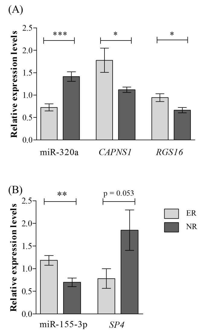 Results from qRT-PCR for miRNAs and target genes differentially expressed between lithium excellent responders and non-responders. Results from qRT-PCR for ( A ) miR-320 and its targets CAPNS1 and RGS16 and ( B ) miR-155-3p and its target SP4 . Abbreviations: ER, excellent responders; qRT-PCR, quantitative reverse transcription-PCR; NR, non-responders. *** p