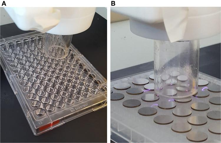 Plasma assisted deposition on (A) <t>96-well</t> <t>microtiter</t> plates, (B) steel coupons.
