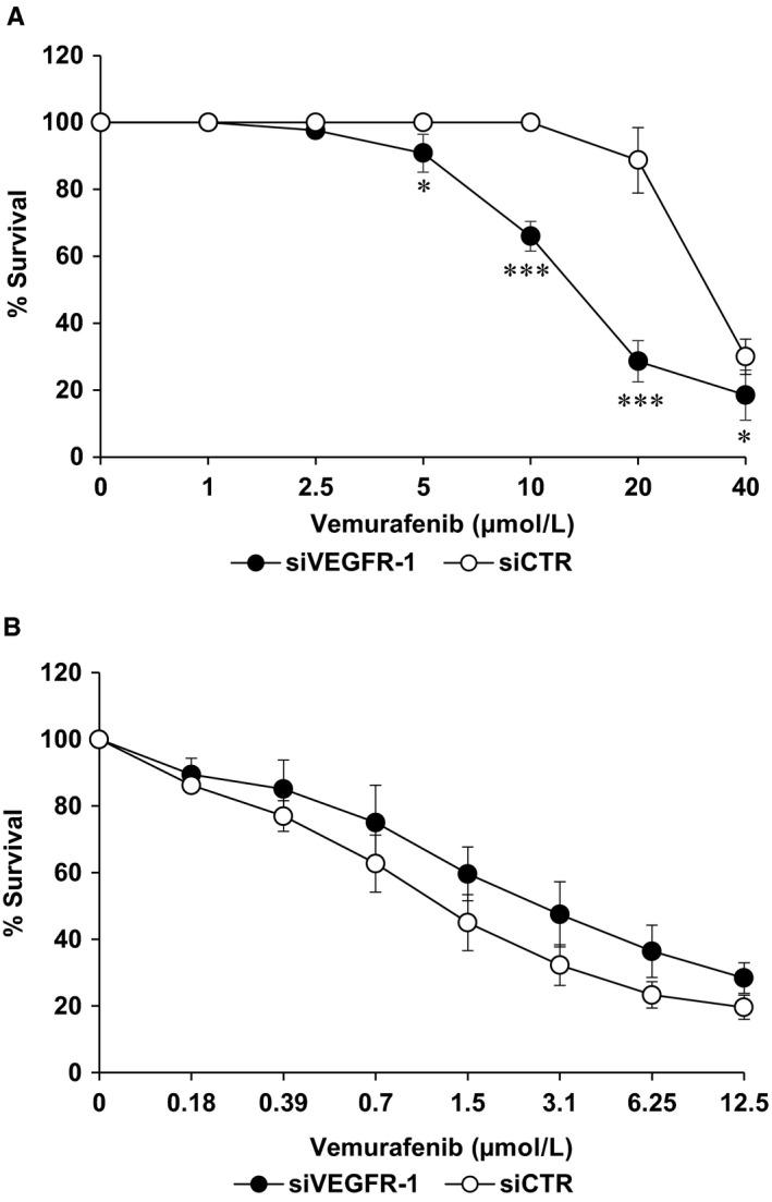 Influence of <t>VEGFR‐1</t> silencing on the susceptibility to vemurafenib of M14‐VR and M14 cells. A and B, M14‐VR (A) or M14 (B) cells (1000/well) were seeded into 96‐well plates and the day after transfected with 10 nmol/L siVEGFR‐1 or siCTR and treated with graded concentrations of vemurafenib. After 5 d of culture, cell growth was analysed by MTS assay. Data are the mean of three independent experiments. Statistical analysis by two‐tailed Student's t test: * P