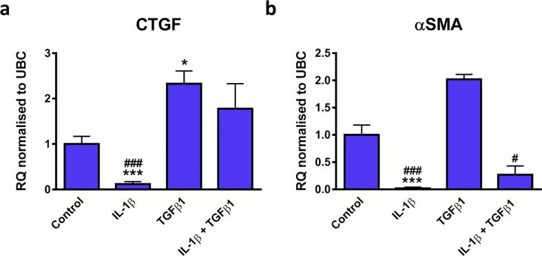 Effect of IL-1β or TGFβ1 alone or in combination on the mRNA expression of CTGF and αSMA in CFs. Quiesced cells were stimulated with IL-1β, TGFβ1 or IL-1β plus TGFβ1 (all at 10 ng/mL) for 24 h. Cells maintained in 0.5% FBS media were used as a control. mRNA levels of (A) CTGF or (B) αSMA was examined. Data represented as relative quantification (RQ) ± rq max normalised to UBC ( n= 3). * P