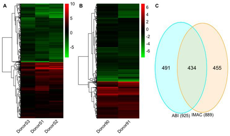 The differential expression profiles for Interleukin-27 (IL-27 regulated mRNAs. ( A ) The hierarchical clustering of differentially regulated mRNAs for iMac vs. mMac in the IMAC experiment. ( B ) The hierarchical clustering of differentially regulated mRNAs for Abi vs. Ab in the ABI experiment. ( C ) Venn diagram indicates the number of overlapping and non-overlapping differential mRNAs in the IMAC and ABI experiments. Values in the heatmap are the fold change for each donor. The color scale shown at the right illustrates the relative expression level of the indicated mRNA in each sample: green denotes downregulated (log 2 fold change