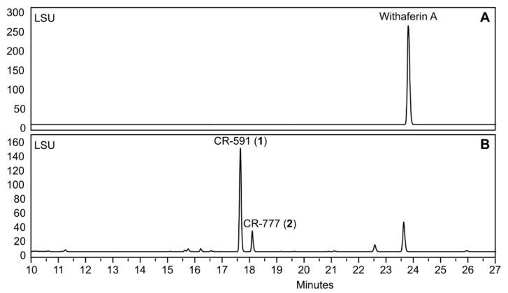 HPLC analysis during the incubation of withaferin A with Beauveria bassiana ATCC 7159. ( A ) Starting chromatogram, ( B ) after 5 days of incubation.