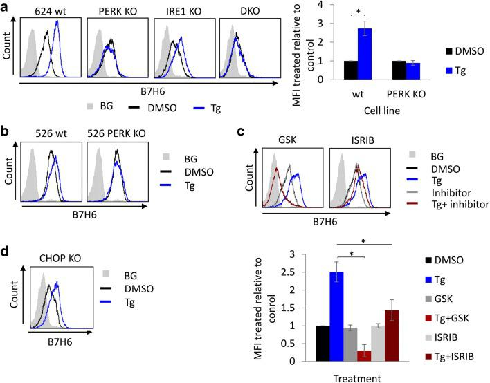 PERK is required for B7H6 upregulation under ER stress conditions. B7H6 surface levels were assessed by flow cytometry after treatment with 0.125 μg/ml <t>thapsigargin</t> (Tg) or mock treated with DMSO for 16 h in the following conditions: a 624 wt, PERK knockout (KO), IRE1 KO and PERK/IRE1 double KO (DKO) cells, to the right appears quantification of the average mean fluorescence intensity (MFI) ± STD of treated relative to untreated cells of three independent experiments. b Melanoma 526 wt and PERK KO cells. c 624 wt cells pretreated with 1 μM GSK or 0.5 μM ISRIB for 1 h. The lower panel shows quantification of the average MFI ± STD of treated relative to untreated cells of three independent experiments. d 624 CHOP KO cells. BG indicates secondary only background staining, which was similar for both treated and untreated cells (shown is the BG for untreated cells)