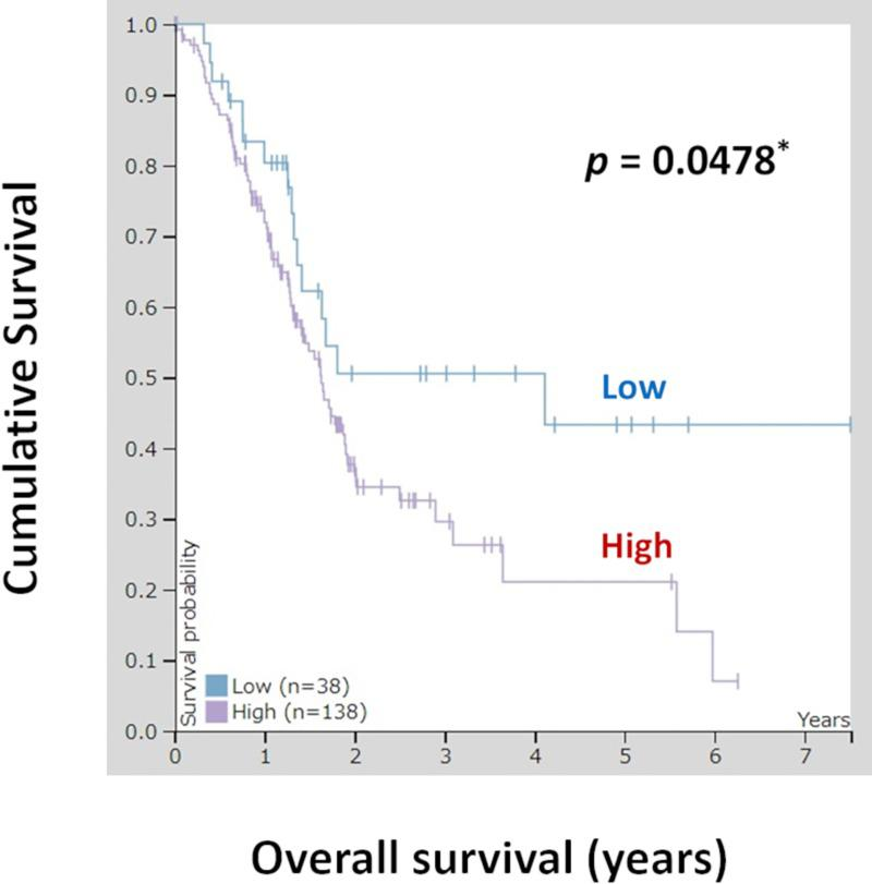 Kaplan-Meier plots summarizing the results from analysis of the correlations between OLFM4 mRNA expression and patient survival in TCGA pancreatic cancer database (n = 176). Red line: high expression (n = 138), blue line: low expression (n = 38).