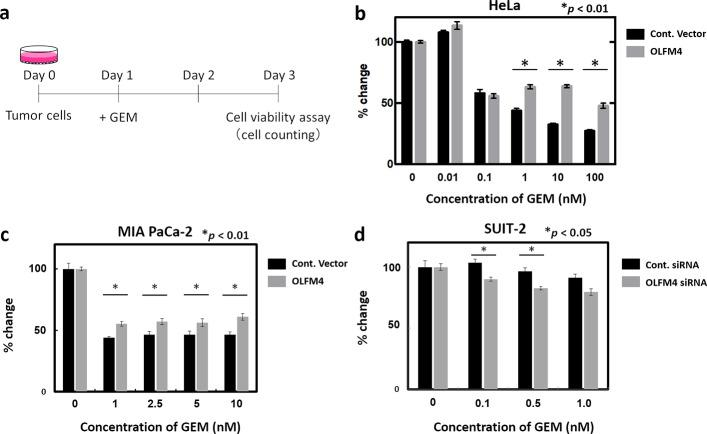 Cell viability assay using cancer cell lines. (a) Schematic representation of the procedure. Expression of the control vector and OLFM4 was induced in indicated cell lines. After 24 h (day 1), GEM was added at various concentrations. Cell viability assays were performed 48 h after GEM administration (day 3). (b and c) Rate of change of each measured OD value of the control vector and OLFM4-expressing HeLa cells (b) and MIA Paca2 cells (c) is shown. (d) Rate of change of each measured OD value of siRNA negative control and specific siRNA targeting OLFM4 induced in SUIT-2 cells is shown.