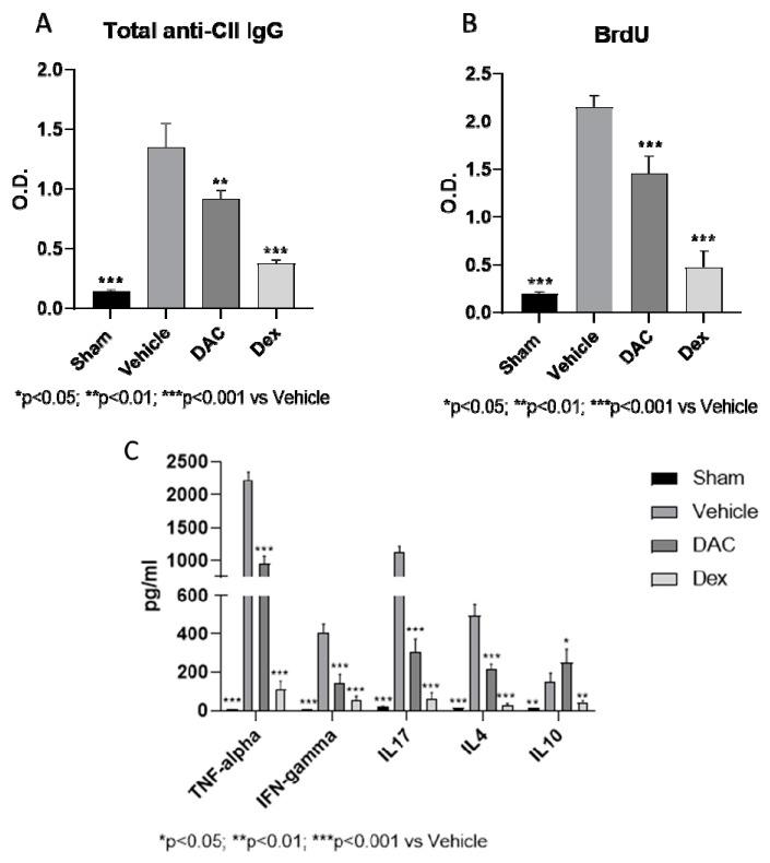 Ex vivo evaluation of total anti- type II collagen (CII) IgG ( A ), antigen-specific proliferation ( B ), and cytokine production ( C ) in splenocytes isolated from CIA-affected mice treated in prophylactic regime with vehicle, DAC, or Dex. O.D.—optical density.