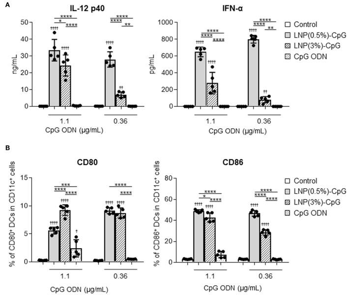 Activation of mouse-derived dendritic cells (DCs) by LNP-CpGs in vitro . Mouse-derived DCs were treated with CpG ODN or with each LNP-CpG for 24 h in vitro . The CpG ODN content was the same between the cells treated with CpG ODN alone and those treated with LNP-CpGs. (A) Cytokine production. Levels of IL-12 p40 and <t>IFN-α</t> in the supernatants were measured by ELISA. (B) Expression of co-stimulatory molecules. Expression of CD80 and CD86 on DCs was measured by flow cytometry; percentages of positive DCs are shown. (A,B) n = 5 per group. Data are means ± SD. † P