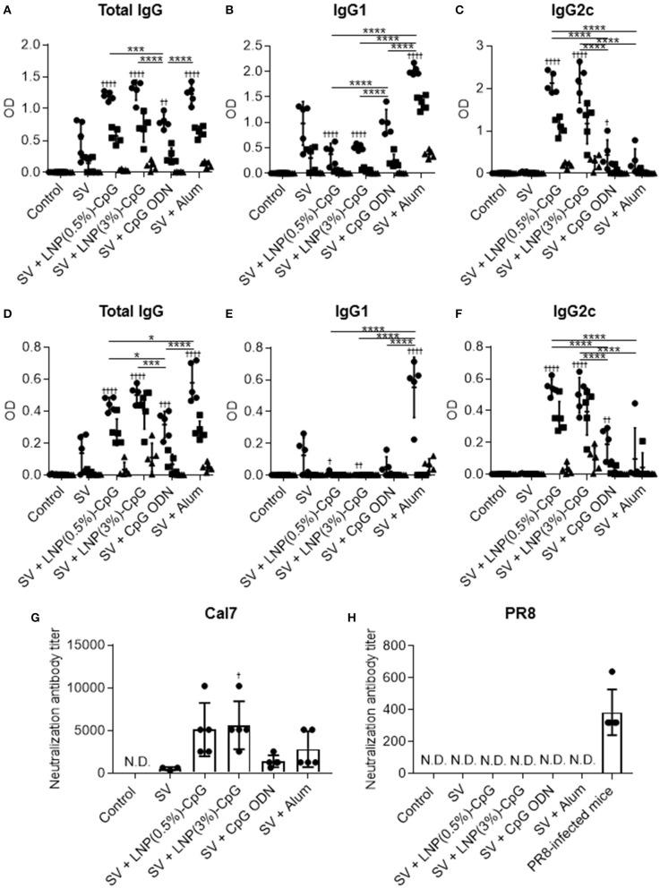 Influenza-virus-specific antibody responses in vivo . Mice were immunized subcutaneously with split vaccine (SV) alone, SV plus CpG ODN, SV plus either LNP-CpG, or SV plus alum. (A–F) Antibody responses. Levels of SV-specific total IgG (A) , IgG1 (B) , and IgG2c (C) , and of PR8-specific total IgG (D) , IgG1 (E) , and IgG2c (F) in plasma were evaluated by using ELISA 7 days after final immunization. We used 6000- (•), 30,000- (■), and 150,000- (▴) fold diluted plasma samples. (G,H) Neutralization titers against influenza virus. Neutralization titers in plasma samples against Cal7 (G) and PR8 (H) were evaluated. (A–F) n = 5 per group. Data are means ± SD. Significant differences were analyzed only in the 6,000-fold-diluted plasma samples. † P