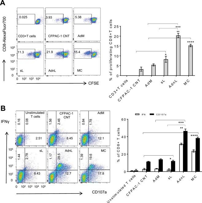 T-cell proliferation and cytotoxic response to mCD40L-activated DC compared with sCD40L. DC co-cultured for 24 hours with CFPAC-1 cells (CFPAC-1 CNT) alone or CFPAC-1 cells pre-transduced with 50 MOI RAdMock (AdM) or RAdnCD40L (AdnL) or treated with sCD40L (sL; 1 µg/ml) or the MC were retrieved and loaded with CFPAC-1 tumour lysate. ( A ) CFSE-labelled autologus CD3+ T cells were incubated with tumour cell lysate-loaded DC at a responder to-stimulator (R:S) T-cell/DC ratio of 10:1 for 5 days or cultured alone as a negative control. Retrieved CD3+ T cells were examined for CD8+ T cells by gating CD3 + CD8+ T cells population utilizing anti-CD3-Pacific blue and anti-CD8-Alexa Fluor 700. CD8+ T cells were selected by gating CD3 and CD8 double stained cells with negative or low CFSE. The results were expressed as the percentage of CFSE negative or low cells with Pacific blue and Alexa Fluor 700 positive staining and represent the mean of three biological experiments ± SD. Two-tailed t-test analysis comparing different treatments including sL/CNT*(p = 0.1515, p = 0.0334), AdnL/sL**(p = 0.0059, p = 0.0148), AdnL/AdM*** (p = 0.0083,p = 0.0132) and MC/CNT****(p = 0.0091, p = 0.0024). ( B) In vitro expanded T cells obtained from co-culture with DC loaded with tumour lysate for 7 days were stimulated for 5 hours with irradiated CFPAC-1 cell lysate-loaded autologous PBMCs. Unstimulated CD3+ T cells were used as a negative control (unstimulated T cells). Protein transport inhibitor, GolgiStop and anti-CD107a PE Ab were added 1 hours after stimulation. Cells were stained with anti-CD3-Pacific blue, anti-CD8-AlexaFluor 700 and <t>anti-IFN-γ</t> APC. Anti-CD3, -CD8 positive stained were gated by flow cytometery and analyzed for CD1017a and IFN-γ positive staining cells. Results represent the mean of three biological experiments ± SD. Two-tailed t-test analysis comparing different treatments including sL/CNT* (p = 0.3671, p = 0.5739), AdnL/sL** (p = 0.0043, p = 0.0025), AdnL/AdM*** (p = 0.0008, p = 0.0068) and MC/CNT**** (p = 0.0066, p = 0.0026) for IFN-γ and CD1017a positive cells respectively.