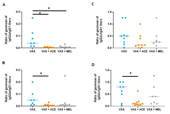 Immunoglobulin <t>(Ig)G2a/IgG1</t> and IgG2c/IgG1 titer ratios in the presence of analgesia. <t>IgG2a/IgG2c</t> response is suppressed in vaccinated BALB/c and C57BL/6 mice. Sera were analyzed by <t>ELISA</t> using irradiated VAX cells or irradiated CO92 cells as capture antigen at a concentration of 10 μg/mL. The ratios of IgG2a/IgG1 antibody titers was calculated from sera of ( A ) BALB/c mice against irradiated VAX cells; VAX compared to VAX + ACE, p = 0.001; VAX compared to VAX + MEL, p = 0.015; ( B ) BALB/c mice against irradiated CO92 cells; VAX compared to VAX + ACE, p = 0.013; ( C ) C57BL/6 mice against irradiated VAX cells. For C57BL/6 VAX + ACE mice anti-VAX titers, one mouse demonstrated an IgG2c/IgG1 ratio of 2.52; this mouse was included for statistical analyses but excluded for graphical representation. ( D ) C57BL/6 mice against irradiated CO92 cells; VAX compared to VAX + ACE, p = 0.021. For C57BL/6 VAX mice anti-CO92 titers, one mouse demonstrated an IgG2c/IgG1 ratio of 4.03; this mouse was included for statistical analyses but excluded for graphical representation. * denotes p