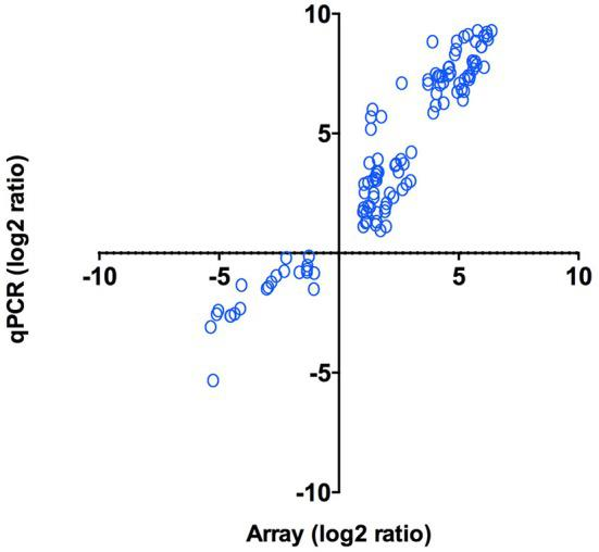 qPCR validation of microarray results. Log 2 ratios (infected/control) of gene expression ( N = 47) calculated from microarrays were plotted against the log 2 ratios derived from qPCR assays. Correlation between microarrays and qPCR was calculated using Pearson correlation ( p