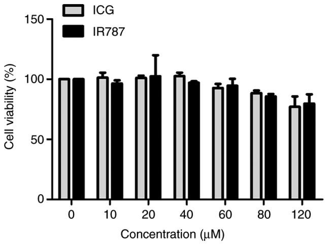 Viability of A549 cells incubated with 0–120 µM IR787 and ICG. ICG, indocyanine green.