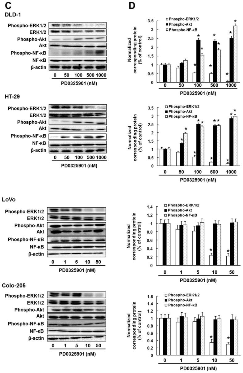Effect of MEK inhibitor on <t>ERK1/2,</t> <t>Akt</t> and NF-κB activation. Cells were administrated with ( A , B ) trametinib or ( C , D ) PD0325901 for 3 days. Control cells (0 μM) were administrated with 0.5% dimethyl sulfoxide (DMSO) for 3 days. ( A , C ) Cell lysates were examined by western blotting assay using indicated antibodies. ( B , D ) Quantification of phosphorylated protein expression, normalized corresponding protein, respectively. The results showed the 5 independent experiments. * p