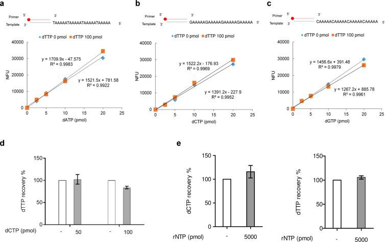 Effect of nucleotides on dNTP quantification by click assay. ( a – c ) Standard curves for ( a ) dATP, ( b ) <t>dCTP,</t> ( c ) dGTP were performed without- or with 100 pmol of dTTP and using Taq polymerase. 5-TAMRA-labeling of streptavidin Sepharose was determined by fluorescence quantitation. The red circle at the 5′ end of the primer indicates biotin. ( d ) Recovery of 20 pmol of dTTP analyzed by <t>C8-alkyne-dCTP</t> incorporation by Vent (exo-) polymerase in the presence of 50 pmol dCTP or 100 pmol dCTP. ( e ) Recovery of 10 pmol of dCTP and 20 pmol of dTTP were analyzed in the presence of rNTP mixtures (5000 pmol of each ATP, CTP, GTP and UTP). Bars represent mean ± SEM and assays were performed in triplicate.