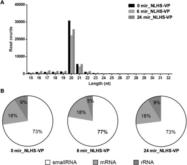 Length distribution, abundance and composition of small RNA libraries of VP AHPND -infected and NLHS-treated L. vannamei hemocytes. ( A ) Length distribution and abundance of small RNAs from hemocytes of NLHS-treated L. vannamei infected with VP AHPND at 0 (0 mir-NLHS-VP), 6 (6 mir-NLHS-VP), and 24 (24 mir-NLHS-VP) hpi. ( B ) Composition of RNAs in each small RNA-Seq library.