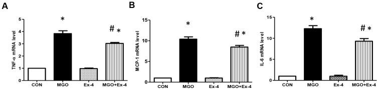 Ex-4 treatment reduces MGO-induced inflammatory cytokine expression in rat mesangial cells. Rat mesangial cells were treated either with 1 mM MGO, 10 nM Ex-4, or both for 10 h after synchronization with 1% fetal bovine serum for 13-16 h. ( A ) TNF-α mRNA level, ( B ) MCP-1 mRNA level, ( C ) IL6 mRNA level in rat mesangial cells. Data are shown as the means ± SEM. * p