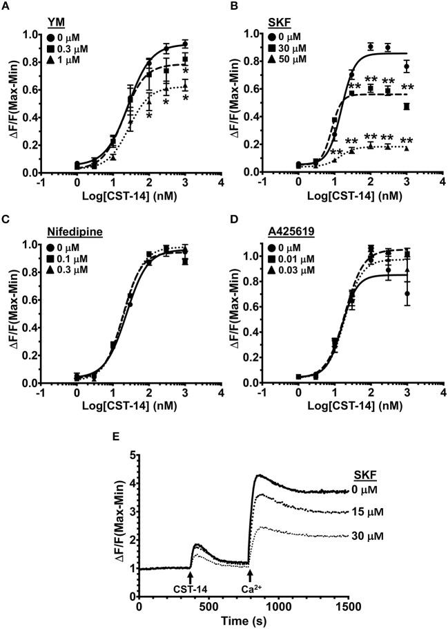 MRGPRX2-induced Ca 2+ mobilization is reduced by SOCE inhibition. (A–D) Intracellular Ca 2+ mobilization in LAD2 human mast cells was determined following incubation with varying concentrations of (A) YM, (B) SKF, (C) Nifedipine, and (D) A425619 for 30 min. Cells were treated with half log doses of the MRGPRX2 agonist cortistatin-14 (CST-14), and changes in fluorescence intensities were recorded for 120 s. Data are plotted as the change in fluorescence [minimum (Min) subtracted from maximum (Max) value] normalized to the maximal change in fluorescence. (E) Traces show SOCE assay following SKF pretreatment. LAD2 cells were suspended in Ca 2+ -free buffer and stimulated with 300 nM CST-14. CaCl 2 (Ca 2+ ) at a final concentration of 2 mM was added to the cells at the indicated timepoint. Plotted curves are the average (mean ± S.E.) of 3–6 independent experiments. Data are analyzed with two-way ANOVA. * p