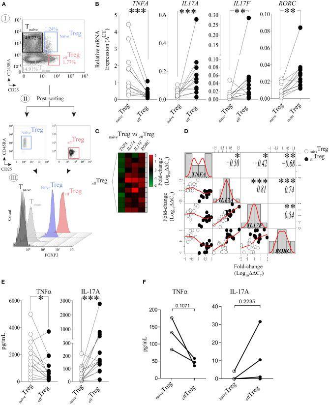 Reciprocal TNFα and IL-17A expression in human naïve Treg and eff Treg cells. (A) An example of the FACS sorting strategy of naïve Treg and eff Treg based on CD4, CD45RA, and CD25 expression (I. dotplots), post-sorting analysis (II. dotplots) and confirmation of FOXP3 expression in the sorted cell population (III. histograms). Conventional CD4 + CD45RA − CD25 − naïve T cells (T naïve ), and CD4 + CD45RA − CD25 − memory T cells (T mem ) were sorted and displayed for comparison of FOXP3 expression levels (III). (B) RT-qPCR gene expression of TNFA, IL17A, IL17F , and RORC in naïve Treg and eff Treg after 20 h of PMA and ionomycin stimulation ( n = 12). (C) Heatmap displaying the fold change of transcripts expression in eff Treg within different donors (rows). naïve Treg were used as reference to calculate the fold change. (D) Multiple correlation matrix depicting the correlation of gene expression in both Treg subsets ( naïve Treg [open dots] and eff Treg [closed dots]). Sample distribution (histogram) is shown, linear regression is also plotted (red lines), whereas p -value significance and r- values are displayed based on Pearson correlation test. Y and X axes depict the log10-fold change of TNFA, IL17A, IL17F , and RORC expression. Each column represents a gene; in every intersection (rows), we observe the correlation between genes. (E) Presence of the cytokines TNFα and IL-17A in culture supernatant after overnight stimulation of Treg subsets using PMA and ionomycin. Cytokines were measured using Luminex ( n = 14). (F) Presence of TNFα and IL-17A in culture supernatants of αCD3/CD28/rhIL-2 activated Treg subsets after 5 days of culture ( n = 3, mean ± SEM). For statistical analysis, Wilcoxon matched-pairs signed-ranks test (B,E) , or two-way ANOVA followed by a Bonferroni post-hoc test (F) were used. * p
