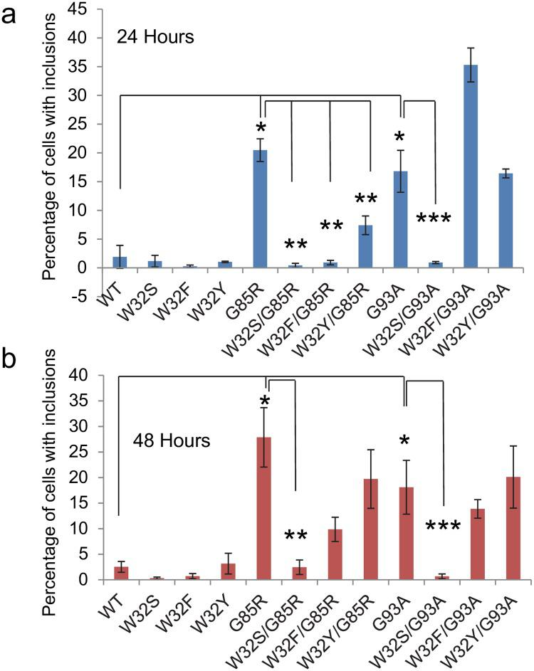 Quantification of SOD1: <t>YFP</t> aggregation at 24 and 48 hours post-transfection. CHO cells were transiently transfected with expression vectors for the various SOD1: YFP constructs and images of the cells were captured at 24 and 48 hours (see S3 and S4 Figs). The effects of substitutions at Trp 32 on <t>SOD</t> aggregation were compared to constructs expressing either G85R or G93A-SOD1: YFP. The data for transfection with WT-, G85R-, and G93A-SOD1: YFP are averages from 6 independent experiments. All other data are from three independent transfections. For all experiments, random images were captured and examined by an observer blind to genotype. The number of total cells counted for each construct across the replications averaged between 60 and 213 cells per construct per experiment. A two-tailed type-2 t-test was used to determine whether the percentage of cells developing inclusions differed between cells expressing individual constructs in a pairwise fashion. *p
