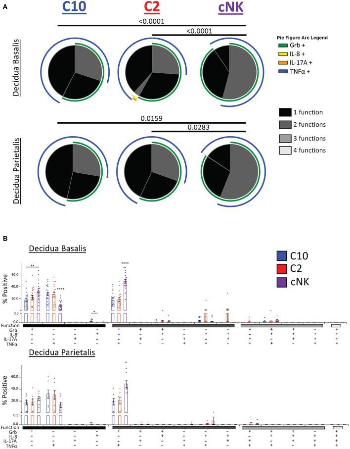 Activation of C10 and C2 ILCs with PMA/Ionomycin Reveals Preference for TNFα. Activation of C10 and C2 led to a higher proportion of TNFα + cells compared to cNKs. Decidua basalis, n = 19; decidua parietalis, n = 7. Data represented as mean ± SEM. Statistical significance was determined by ANOVA followed by Tukey test. * p