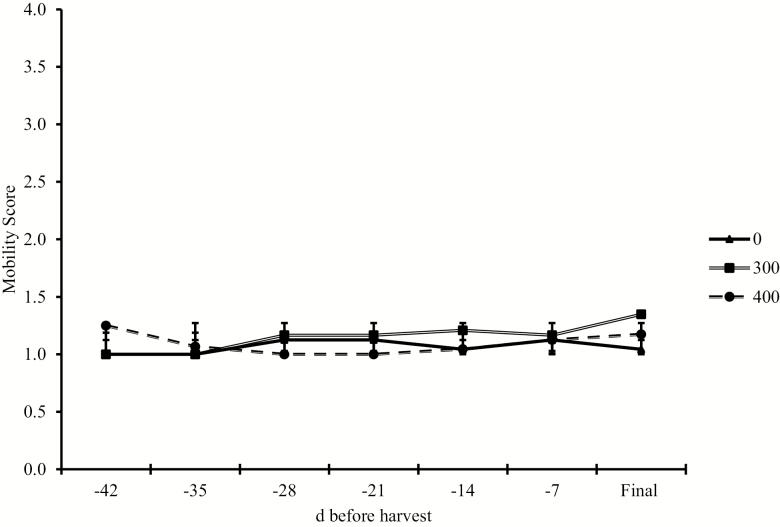 Effects of ractopamine hydrochloride fed at 0, 300, or 400 mg steer −1 d −1 on pen mobility scores when fed to Holstein steers. Ractopamine hydrochloride was fed at 3 doses (0, 300, or 400 mg hd −1 d −1 ) at 3 durations (28, 35, or 42 d). Steers were evaluated as a pen for mobility while moving from their home pens to the processing facility. The 1- to 4-point scoring system was adapted from Lily Edwards-Callaway; JBS. 1 = normal, fluid, even rhythm, and weight bearing on all 4 feet, 2 = slightly hesitant and stiff, shuffles feet, but still moves with the herd, 3 = obviously still and sore footed, reluctant to move, cannot keep up with the herd, 4 = extremely reluctant to move, animal refused to move when encouraged by a handler; any steps are short and very unsteady. SEM = 0.08. Dose, P = 0.18; Week, P = 0.16; Dose × Week, P = 0.11. Dose: linear, P = 0.26; quadratic, P = 0.14.