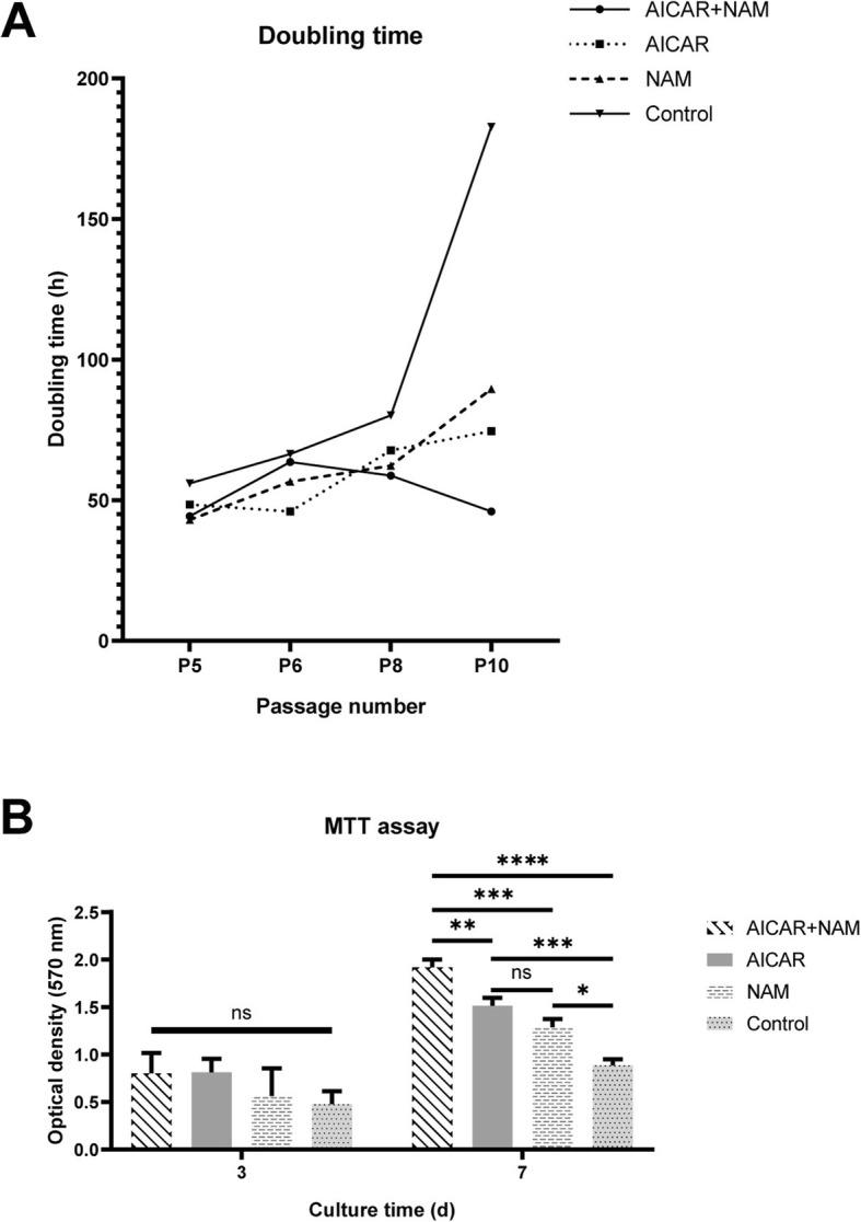 Effect of AICAR and NAM on doubling time and MTT assay of the aging MSCs. a AICAR, NAM, and combination of AICAR+NAM reduce the doubling time of MSCs compared to the control group, from P5 to P10. b Proliferative capacity of MSCs at P10 was determined by MTT assay at the third and seventh day of culture ( n = 3 independent experiments). Each bar indicates mean ± SD (* p