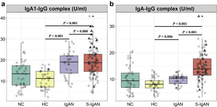 Detection of circulating IgA/IgG immune complex (IgA/IgG-IC) in nephropathy controls (NCs), healthy controls (HCs), IgA nephropathy cases (IgANs), and secondary IgA nephropathy cases (S-IgANs). (a) IgA1-IgG complex; (b) IgA-IgG complex. Triangles, data for IgANs with concurrent cirrhosis.
