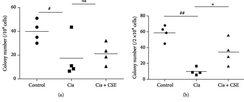 CSE restores hematopoietic progenitors in mice after cisplatin administration. One day after the last cisplatin injection, bone marrow (a) and spleen (b) cells were cultured for respective 9 and 13 days, and the colony number of CFU-GM per bone marrow and spleen was counted. Data are represented as mean ± SEM ( n = 4 per group). The significance of the data was analyzed by one-way ANOVA with post hoc Dunnett's test. # P