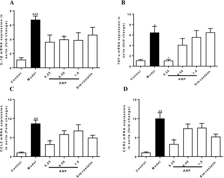 Effect of ANP on mRNA expression levels of IL-1β, TNF-α, <t>CCL2,</t> and CCR2 in the aorta. (A) mRNA expression levels of IL-1β, (B) mRNA expression levels of TNF-α, (C) mRNA expression levels of CCL2, (D) mRNA expression levels of CCR2. Compared with control group, # p