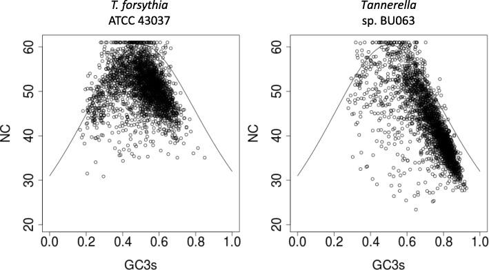 Analysis of codon usage for ATCC 43037 (left panel) and BU063 (right panel). The continuous curves indicate the NC values to be expected for a given GC3s content in the absence of other factors shaping codon usage. Every dot represents a protein coding gene, dots not positioned near the curve therefore represent genes that display a considerable codon usage bias. GC3s: G + C content at synonymous positions, NC: effective number of codons used within the sequence of a gene