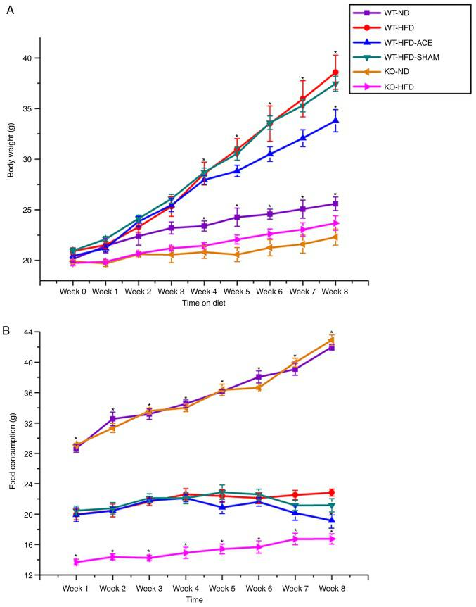 Weekly body weight alterations and food consumption in the six subject groups. (A) The graph presents comparisons of body weight in the WT-ND, WT-HFD, WT-HFD-ACE, WT-HFD-SHAM, KO-ND and KO-HFD groups. Significant body weight increases in the WT-HFD, WT-HFD-ACE and WT-HFD-SHAM groups compared to the WT-ND group and both TRPV1 KO mouse groups were observed. * P