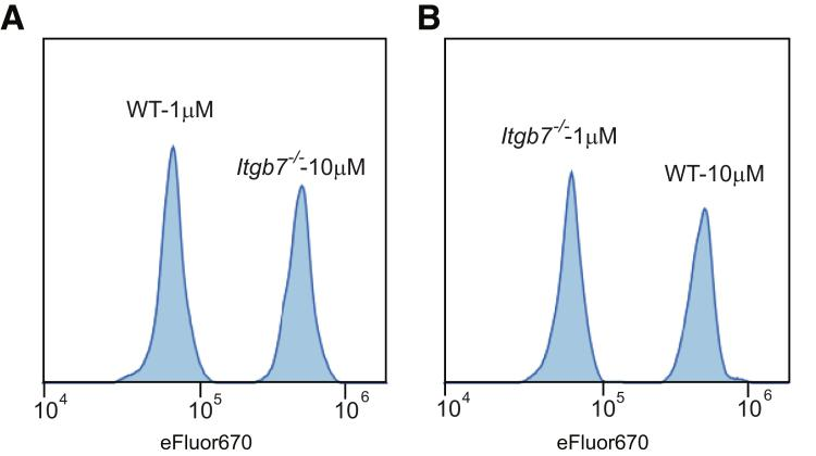 Validation of dual-label intensity homing assay. ( A ) GFP + Tregs were sorted with a FACSAria 2 (BD Biosciences) from Itgb7 +/+ Foxp3 GFP or Itgb7 -/- Foxp3 GFP mice and labeled with 1 or 10 μmol/L of eFluor670, respectively. Equal numbers (1 Χ 10 7 ) of differentially labeled Tregs were mixed and then injected intravenously into C57BL/6 recipient mice. Spleens were harvested 3 hours after injection and isolated cells were analyzed by flow cytometry. The representative histograms were gated on GFP + Tregs. As shown in this histogram, this differential labeling produces 2 readily distinguished cell populations. ( B ) The same experiment was performed as in panel A , with the cell types receiving each concentration of eFluor670 reversed, that is, Itgb7 +/+ Foxp3 GFP (WT) or Itgb7 -/- Foxp3 GFP ( Itgb7 -/- ) mice were labeled with 10 μmol/L or 1 μmol/L of eFluor670, respectively.