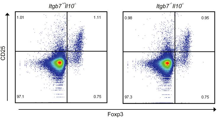 CD25 and Foxp3 expression on Itgb7 -/- Tregs. Expression of CD25 and Foxp3 on Tregs from Itgb7 +/+ Foxp3 GFP or Itgb7 -/- Foxp3 GFP mice are shown. Splenocytes were stained with CD25 antibody and then analyzed by flow cytometry.