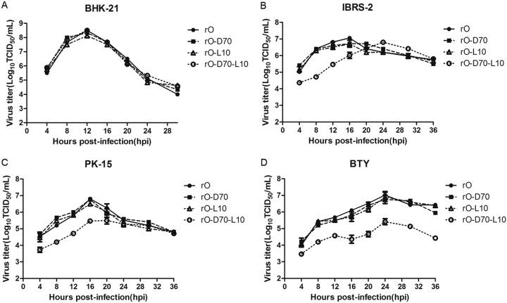 rO-D70-L10 showed significantly decreased infective ability for bovine cells compared to that of rO. One-step growth curves are shown for the four recombinant viruses in BHK-21 (A), IBRS-2 (B), PK-15 (C), and BTY (D) cells. The cells were infected with each virus at a multiplicity of infection (MOI) of 0.5 and maintained at 37°C. Samples of supernatants were harvested at the indicated times, and viral titers were measured.