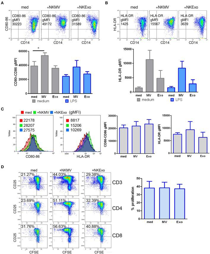 Effects of natural killer cell-derived extracellular vesicles (NKEVs) on monocytes. (A) Flow cytometry analysis of CD80–CD86 geo mean fluorescence intensity (gMFI) of gated CD14 + cells in peripheral blood mononuclear cells (PBMCs) cultured in the presence or absence of NK-cell-derived microvesicles (NKMV), NKExo, and/or lipopolysacharride (LPS) for 24 h. Upper panels: representative dot plots showing CD80–CD86 expression in the presence of NKMV and NKExo, lower panel: graphical summary of different healthy donors. (B) Flow cytometry of human leukocyte antigen DR isotype (HLA-DR) gMFI of CD14 + gated monocytes as in (A) . Results for different donors ( n = 3) are shown. (C) Effects of NKEVs on isolated monocytes, measured by flow cytometry after 24 h culture of CD14 + cells with NKMV or NKExo. Left panels: gMFI of CD80-86 and HLA-DR expression by monocytes of one healthy donor. Right panel: results from different healthy donors ( n = 3). (D) Stimulatory potential of monocytes preconditioned with NKMV and NKExo. Left panels: flow cytometry analysis of 72 h proliferation and CD25 expression by CD3, CD4, and CD8 T cells cultured in the presence of monocytes (medium), monocytes preconditioned with NKMV or NKExo. Right panels: graphical summary showing results from different healthy donors ( n = 3). Percentage of proliferation is indicated. Statistical significance was achieved by paired t test. Means ± SD are plotted, * p