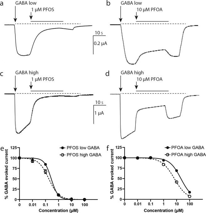Antagonistic effects of PFOS and PFOA on the human GABA A receptor. Example recordings of inhibition of GABA-evoked ion currents by co-application of PFOS (1 µM, a , c ) or PFOA (10 µM, b , d ) with GABA (at low and high effective GABA concentration, respectively). PFOS-induced inhibition is poorly reversible ( a , c ), whereas PFOA-induced inhibition is reversed within seconds ( b , d ). Scale bar applies to all traces. Concentration-response curves show the concentration-dependent inhibition of GABA-evoked responses by PFOS ( e ) and PFOA ( f ) on the human GAB A receptor with at low ( e , f ; solid line) and high ( e,f ; dashed line) effective GABA concentrations. Inhibition is presented as percentage of the GABA-evoked response (mean ± SEM, n = 3–4 oocytes per concentration from N = 1–2 batches).