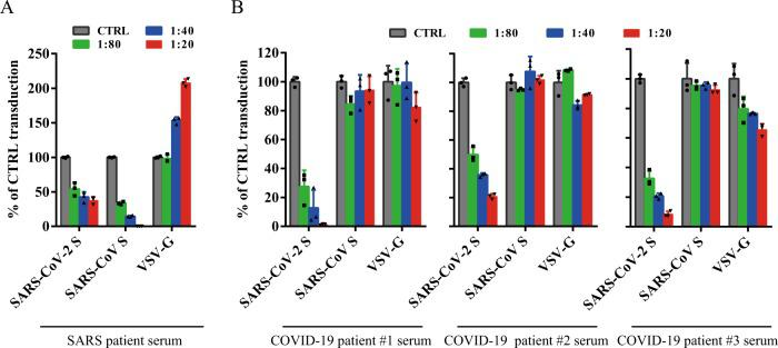 Limited cross-neutralization of SARS and COVID-19 sera. All sera were incubated on 56 °C for 30 min to eliminate complement. SARS-CoV S and SARS-CoV-2 S pseudovirons were pre-incubated with serially diluted SARS patient serum ( a ) or COVID-19 patient sera ( b ) for 1 h on ice and then added on 293/hACE2 cells. Pseudoviral transduction was measured 40 h later. Experiments were done in triplicates and repeated twice, and one representative is shown. Error bars indicate SEM of technical triplicates. Source data are provided as a Source Data file.