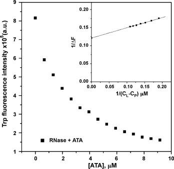 Binding isotherm for the interaction of RNase A with ATA at 25 °C. The tryptophan fluorescence emission intensity ( λ ex = 295 nm, λ em = 340 nm) was plotted as a function of ligand (ATA) concentration C L . Inset shows the corresponding plot of 1/Δ F (Δ F denotes the change in fluorescence) against 1/( C L − C P ) to evaluate the dissociation constant by means of Eq. (1) , where C P is the protein concentration.