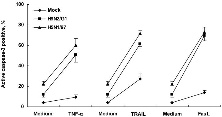 H9N2/G1 and H5N1/97 infection sensitizing Jurkat T cells to induction of apoptosis by tumor necrosis factor (TNF)–α, TNF-related apoptosis-inducing ligand (TRAIL), and Fas ligand (FasL). After 1 h of virus adsorption, H9N2/G1- and H5N1/97-infected Jurkat T cells were cultured in presence of exogenous TNF-α (500 ng/mL), TRAIL (10 ng/mL), or FasL (10 ng/mL), respectively, for another 24-h culture. A significantly higher percentage of apoptotic cells was observed (P