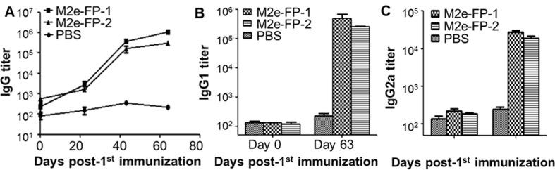 Antibody responses in sera of mice immunized with M2e-FP-1 and M2e-FP-2 proteins . Mice were immunized with M2e-FP-1 and M2e-FP-2 proteins, or PBS as a control, and sera were collected at the indicated time points post-immunization to detect M2e-FP-specific IgG (A), IgG1 (B), and IgG2a (C) antibodies by ELISA. The antibody titers were expressed as the endpoint dilutions that remain positively detectable, and presented as mean ± SD of 5 mice in each group.